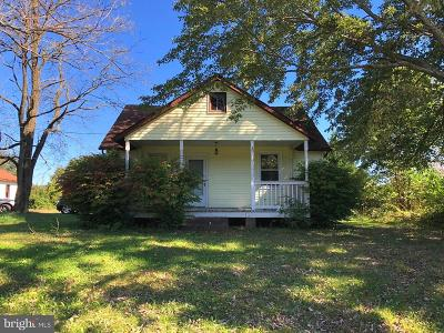 Fauquier County Single Family Home For Sale: 7113 Grays Mill Road
