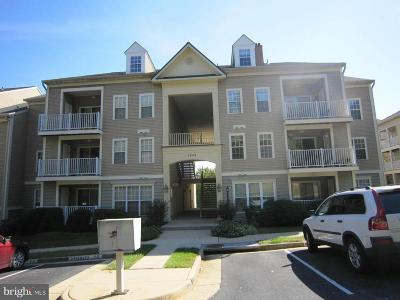 Woodbridge Condo For Sale: 1043 Gardenview Loop #204