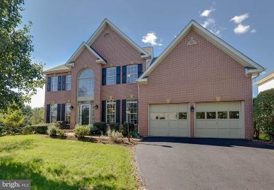 Ashburn Single Family Home For Sale: 22006 Hyde Park Drive