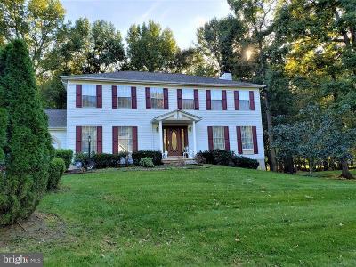 Newark Single Family Home For Sale: 207 Rhett Drive