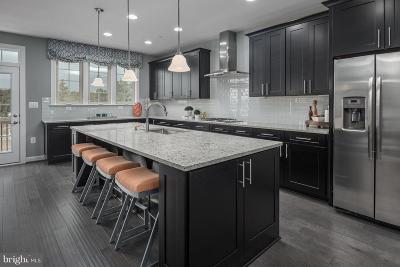 Leesburg Townhouse For Sale: 1618 Rocky Shale Terrace