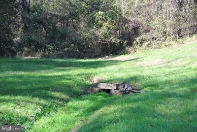 Rappahannock County Residential Lots & Land For Sale: 11659 Lee Hwy