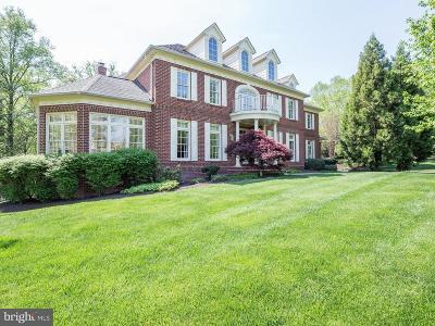 Oakton Single Family Home For Sale: 2552 Bridge Hill Lane