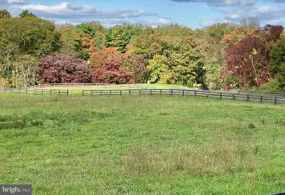 Middleburg Residential Lots & Land For Sale: Middleburg Downs Lot 46