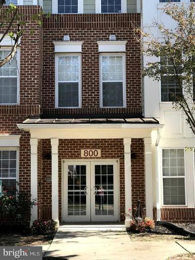 Charles County Condo For Sale: 800 Edelen Station Place #102