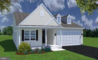 Smyrna Single Family Home For Sale: 11 Ivy Glen Court
