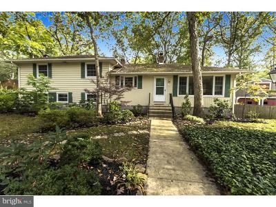Medford Lakes Single Family Home For Sale: 47 Lenape Trail