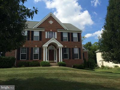Hagerstown Single Family Home For Sale: 18246 Rockland Drive