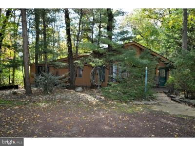 Medford Lakes Single Family Home For Sale: 264 Chippewa Trail