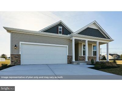 Smyrna Single Family Home For Sale: 115 Magnolia Avenue