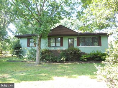 Single Family Home For Sale: 1287 New Brooklyn Road