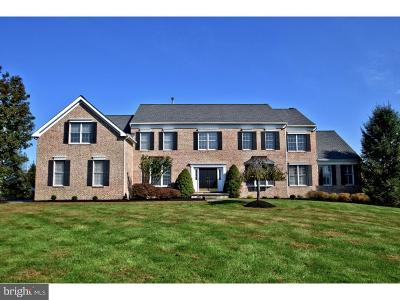 Bucks County Single Family Home For Sale: 29 Hibbs Lane
