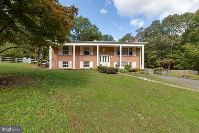 Bristow, Nokesville Single Family Home For Sale: 7562 Greenville Road