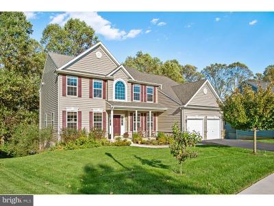 Newark Single Family Home For Sale: 825 Colorado Drive