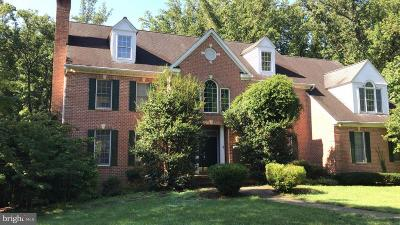 Annapolis Single Family Home For Sale: 234 Meadowgate Drive