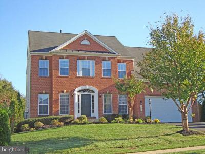 Manassas Single Family Home For Sale: 5599 Websters Way