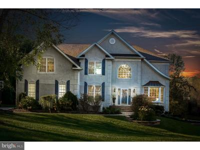 Delaware County Single Family Home Under Contract: 17 Beech Tree Drive