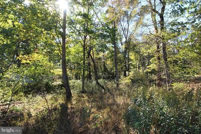 Woodstock VA Residential Lots & Land For Sale: $115,000