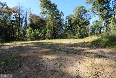 Woodstock VA Residential Lots & Land For Sale: $100,000