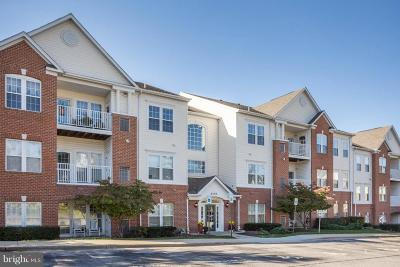 Piney Orchard Condo For Sale: 2400 Chestnut Terrace Court #102