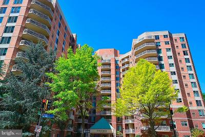 Bethesda Condo For Sale: 7500 Woodmont Avenue #S1006
