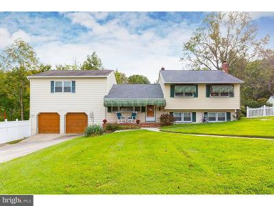 Swedesboro Single Family Home For Sale: 144 East Avenue