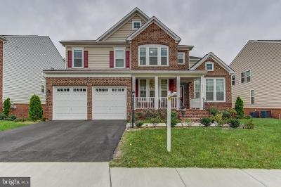 Ashburn Single Family Home For Sale: 42339 Stonemont Circle