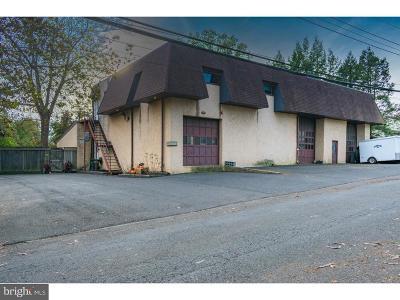 Bucks County Commercial For Sale: 641 Hazel Avenue