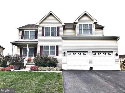 Smyrna Single Family Home For Sale: 95 Jump Drive