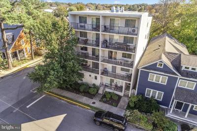 Rehoboth Beach Condo For Sale: 84 Sussex Street #7