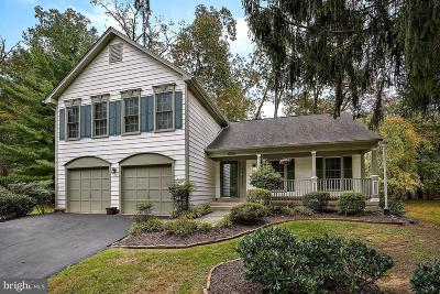 Gaithersburg Single Family Home For Sale: 8201 Rainbowview Place