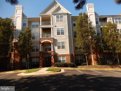Falls Church Condo For Sale: 3015 Nicosh Circle #2105