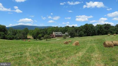 Rappahannock County Farm For Sale: 870 Zachary Taylor Highway