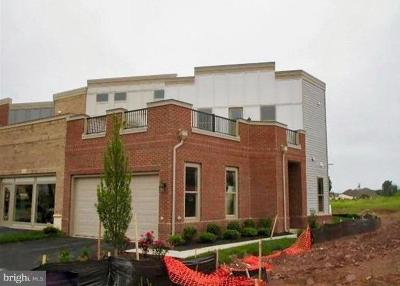 Brambleton Townhouse For Sale: 3 Cumulus Terrace
