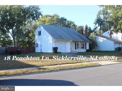 Winslow Single Family Home For Sale: 18 Peachton Lane