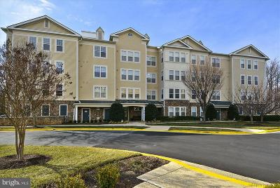 Gaithersburg Condo For Sale: 310 High Gables Drive #303