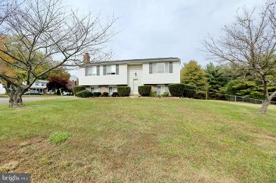 Waldorf Single Family Home For Sale: 10200 Briarwood Place