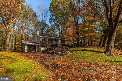 Bethesda Single Family Home For Sale: 7709 Hamilton Spring Road