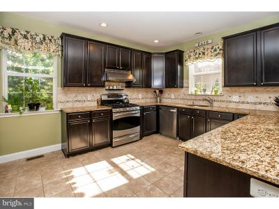 King Of Prussia Single Family Home For Sale: 338-D Ross Road