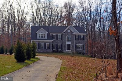 Clarksville, Columbia, Ellicott City, Laurel Single Family Home For Sale: 2921 Maple Leaf Way