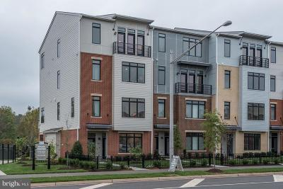 Leesburg Townhouse For Sale: 1016 Ribbon Limestone Terrace