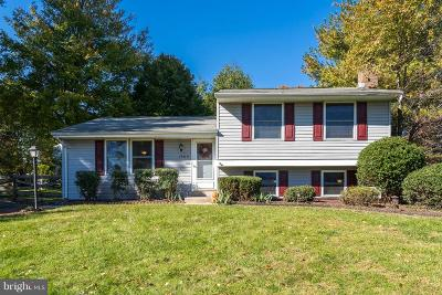 Poolesville Single Family Home For Sale: 19110 Dowden Circle