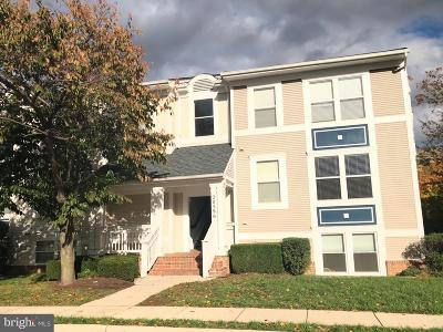 Ashburn Condo For Sale: 20596 Cornstalk Terrace #201