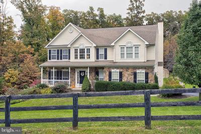 Winchester Single Family Home For Sale: 123 Ewell Drive