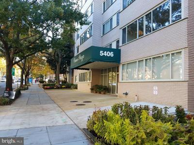 Chevy Chase Condo For Sale: 5406 Connecticut Avenue NW #508