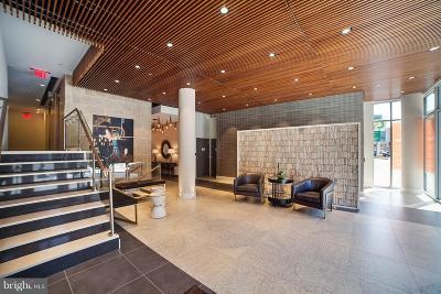 Logan Circle Rental For Rent: 1311 13th Street NW #204