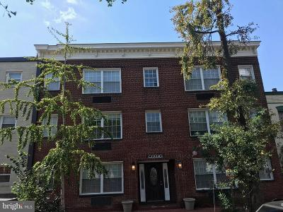 Shaw Rental For Rent: 1516 Marion Street NW #105