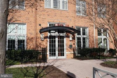 Capitol Hill Condo For Sale: 1391 Pennsylvania Avenue SE #253