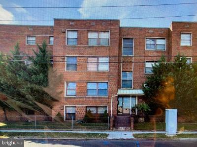 Brookland Condo For Sale: 2720 7th Street NE #101