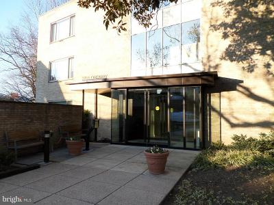 Cleveland Park Condo For Sale: 2755 Ordway Street NW #311